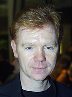 Bal Harbour, FL 3-6-2002<br /> David Caruso<br /> at the grand opening of The Luis <br /> Vuitton global store opening celebration.<br /> Digital Photo by Adam Scull/PHOTOlink