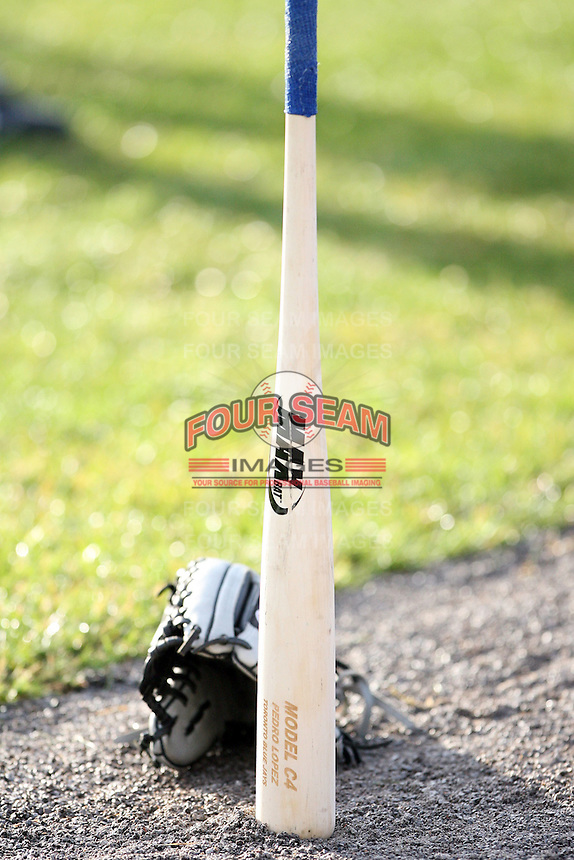 June 18th 2008:  A bat belonging to the Auburn Doubledays stands on its own before a game at Dwyer Stadium in Batavia, NY.  Photo by:  Mike Janes/Four Seam Images