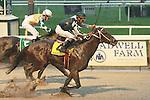 03 10 2009: Kodiak Kowboy & Shaun Bridgmohan win the 70th running of the GRade I Vosburgh at 6 furlongs over a sloppy track at Belmont Park, Elmont, NY