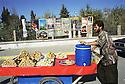 Irak 2000.Vendeur de rue  à Erbil.Iraq 2000.Selling sweets in the street