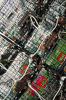 tilted view of modern lobster traps. Stonington Maine United States coastal Maine, New England.