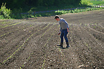 """Foto: VidiPhoto<br /> <br /> ROMAGNE – Bij de Slag om Verdun in 1916 tijdens de Eerste Wereldoorlog, is er zoveel oorlogsmaterieel achtergebleven, dat de akkers en bossen er nu nog mee bezaaid liggen. Dat trekt jaarlijks tienduizenden verzamelaars naar de voormalige oorlogsvelden, onder wie opmerkelijk veel Nederlanders. Officieel is het verboden oorlogsrestanten op te graven of te zoeken, mede vanwege ontploffingsgevaar. Wie betrapt wordt kan een boete krijgen van 7200 euro. Volgens de Nederlandse museumeigenaar Jean-Paul de Vries van museum Romagne '14-'18, wordt er """"goudgeld"""" betaald voor bijzondere vondsten. Een puntgave Duitse helm uit de eerste periode van de """"Great War"""", zoals de Eerste Wereldoorlog internationaal bekend staat, 'doet' al snel 1250 euro. Zelf zoekt hij al 42 jaar naar bodemvondsten met toestemming van grondeigenaren. Een deel daarvan wordt verkocht en een ander deel wordt in zijn museum geëxposeerd. Het laatste jaar krijgt hij veel -illegale- concurrentie van Polen, die verwachten snel rijk te worden. Dit jaar trekt Verdun en omgeving meer bezoekers dan ooit. In november is het namelijk precies 100 jaar geleden dat de wapenstilstand werd getekend tussen de geallieerden (Triple Entente) en de Centrale Mogendheden. De Eerste Wereldoorlog eiste 8,5 miljoen levens."""