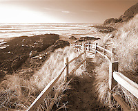 Fenced pathway to beach. Near Yachats, Oregon.