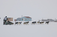 Jeff King on the trail nearing Nome at Farley's camp in foggy conditions.    End of the  2005 Iditarod Trail Sled Dog Race.