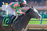 November 28, 2020: Silk and Sugar, trained by Ian Wilkes and ridden by Chris Landeros, wins Race 1, maiden special weight, at Churchill Downs in Louisville, Kentucky on November 28 2020. Jessica Morgan/Eclipse Sportswire.