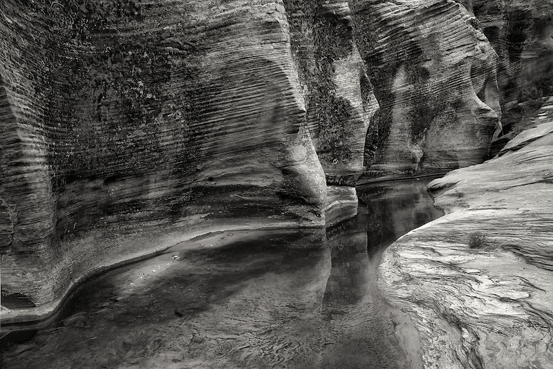Seasonal Streambed with water and reflection. Zion National Park, UT