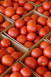canning red tomatoes,  Zacherl's Farm Market, Route 23