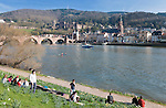 Germany, Baden-Wuerttemberg, Heidelberg at river Neckar: view at old town with Old Bridge gate, Church of the Holy Spirit and Heidelberg Castle at background | Deutschland, Baden-Wuerttemberg, Heidelberg am Neckar: die ersten warmen Sonnenstrahlen laden zum Sonnenbad gegenueber der Altstadt mit dem Brueckentor am Suedende der Alten Bruecke, der Heiliggeistkirche und dem Heidelberger Schloss