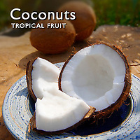 Coconuts Fruit  | Coconut Food Pictures, Photos & Images