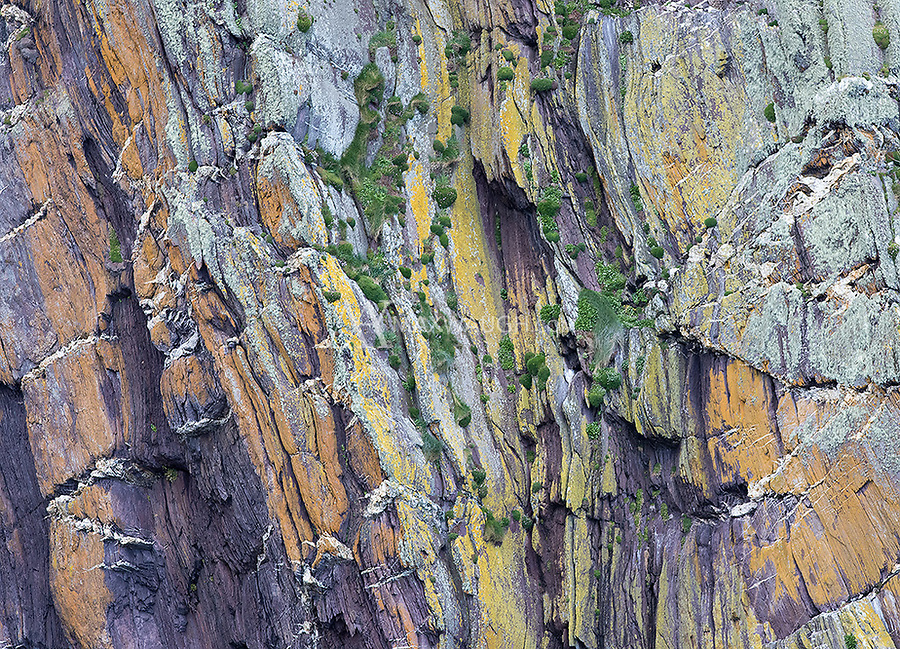 There are lots of cool patterns and colors in the cliffs near Dingle.