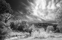 Infrared clouds at Lost Maples State Natural Area.<br /> <br /> Nikon F3HP, 24mm lens, Kodak High Speed Infrared film, red filter