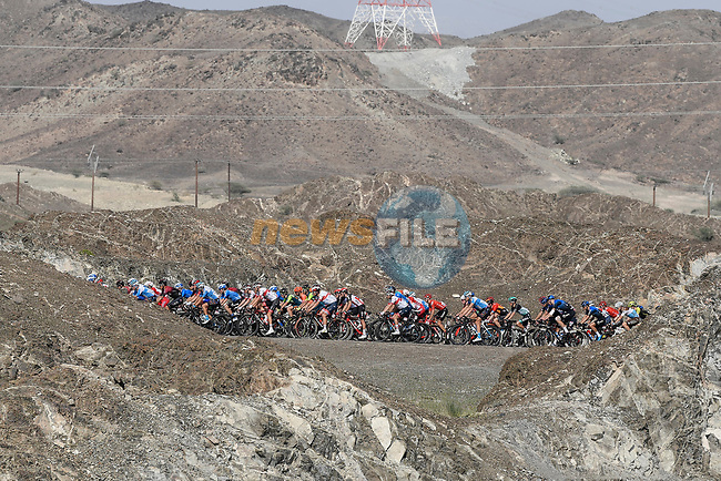 The peloton in action during Stage 2 the Dubai Municipality Stage of the UAE Tour 2020 running 168km from Hatta to Hatta Dam, Dubai. 24th February 2020.<br /> Picture: LaPresse/Fabio Ferrari | Cyclefile<br /> <br /> All photos usage must carry mandatory copyright credit (© Cyclefile | LaPresse/Fabio Ferrari)