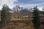 A small grove of aspens below Rocky Mountain peaks in Colorado.