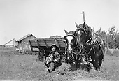 0705-J02.  Agriculture. A man is seated on a bale of hay with his dog, beside a wagon drawn by 2 horses. Negative came from Monterey, California