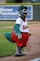Great Lakes Loons mascot Lou E. Lou during a game against the Fort Wayne TinCaps on August 19, 2013 at Dow Diamond in Midland, Michigan.  Great Lakes defeated Fort Wayne 12-5.  (Mike Janes/Four Seam Images)