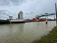 Gernsheimer Hafen - Gernsheim 03.02.2021: Hochwasser am Gernsheimer Rheinhafen