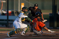 AZL Athletics catcher Jorge Gordon (33) applies the tag to George Bell (38) during an Arizona League game against the AZL Giants Orange at Lew Wolff Training Complex on June 25, 2018 in Mesa, Arizona. AZL Giants Orange defeated the AZL Athletics 7-5. (Zachary Lucy/Four Seam Images)