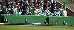 31.03.2019 Celtic v Rangers: LED boards knocked over