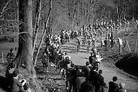 peloton over the Kemmelberg<br /> <br /> 3 Days of West-Flanders<br /> stage 2: Nieuwpoort - Ichtegem 186km