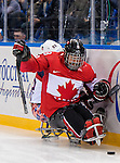 Sochi, RUSSIA - Mar 13 2014 - Billy Bridges protects the puck as Canada takes on USA in Sledge Hockey Semi-Final at the 2014 Paralympic Winter Games in Sochi, Russia.  (Photo: Matthew Murnaghan/Canadian Paralympic Committee)
