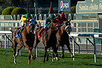 ARCADIA, CA JANUARY 21:  #3 Vasilika, ridden by Flavien Prat,in the stretch with #1 Ms Bad Behavior, ridden by Mike Smith, and #2 Zaffinah, ridden by Rafael Bejarano, to win the Megahertz Stakes (Grade lll) on January 21, 2019 at Santa Anita Park in Arcadia, CA. (Photo by Casey Phillips/Eclipse Sportswire/CSM)