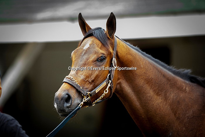 April 28, 2021: Oaks contender Search Results gets a bathat Churchill Downs in Louisville, Kentucky on April 28, 2021. EversEclipse Sportswire/CSM