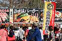 Jingu Gaien Ginkgo Festival ''Ichou Matsuri'' 2018