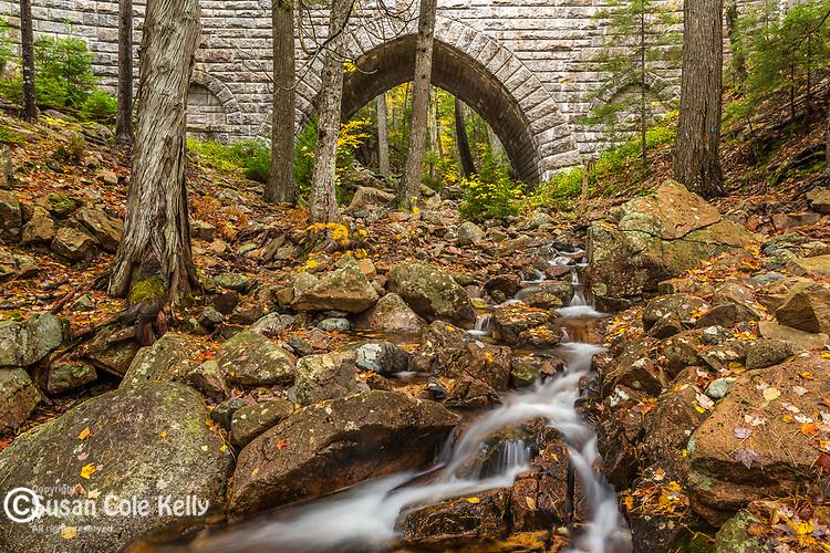 Maple Spring flows through the Hemlock Bridge in Acadia National Park, Maine, USA