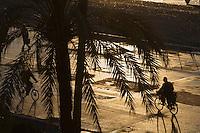 Europe/France/Provence-Alpes-Côte d'Azur/06/Alpes-Maritimes/Nice: Cycliste sur la Promenade des Anglais - vue depuis l' Hôtel: Le Négresco