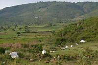 TANSANIA, Tarime Distrikt, Nyamongo, Dorf Nyakunguru, weisse Grenzsteine der Acacia PLC Gold Mine, angrenzende Doerfer und Felder