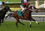 Jeranimo with Rafael Bejarano aboard wins the Grade II San Gabriel Stakes at Santa Anita Park in Arcadia, California on January 4, 2014. (Zoe Metz/ Eclipse Sportswire)