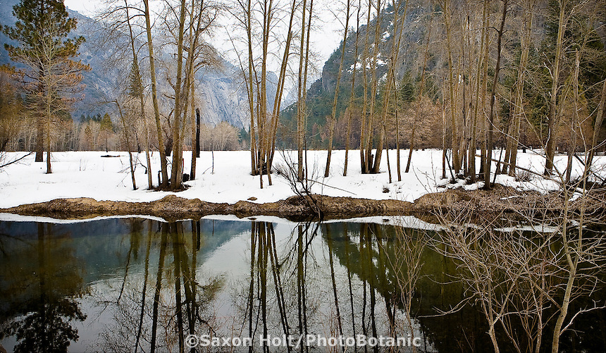 Yosemite National Park, Calfornia winter landscape with snow, Merced river reflection