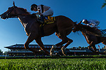 09042021:#6 Great Island ridden by Joel Rosario at the start of the Flower Bowl on The JOCKEY GOLD CUP day at Saratoga<br /> Robert Simmons/Eclipse Sportswire
