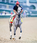 August 31, 2020: Enforceable exercises as horses prepare for the 2020 Kentucky Derby and Kentucky Oaks at Churchill Downs in Louisville, Kentucky. The race is being run without fans due to the coronavirus pandemic that has gripped the world and nation for much of the year. Scott Serio/Eclipse Sportswire/CSM