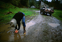 Ranches washes his hands in a puddle after working all day in the rain doing chores. Northern California can get up to 100 inches of rain a year.