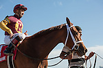 Sweet N Discreet and jockey Joe Bravo after winning the Florida Sunshine Millions Distaff at Gulfstream Park, Hallandale Beach Florida. 01-18-2014