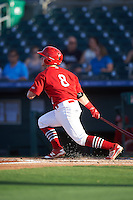 Palm Beach Cardinals second baseman Dylan Tice (8) at bat during a game against the Jupiter Hammerheads  on August 12, 2016 at Roger Dean Stadium in Jupiter, Florida.  Jupiter defeated Palm Beach 9-0.  (Mike Janes/Four Seam Images)