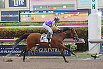 January 02, 2016: Awesome Banner (FL) with jockey Jose Caraballo on board wins the Hutcheson Stakes G3  at Gulfstream Park in Hallandale Beach, FL.  Liz Lamont/ESW/CSM