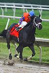 Jockey Richard Migliore aboard Unbridled Belle Obeah Stakes at Delaware Park in New Stanton, Delaware 06.20.09