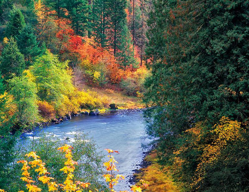 Fall colored trees along the North Umpqua River, Oregon