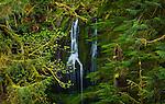 Waterfall, Columbia River Gorge, Oregon