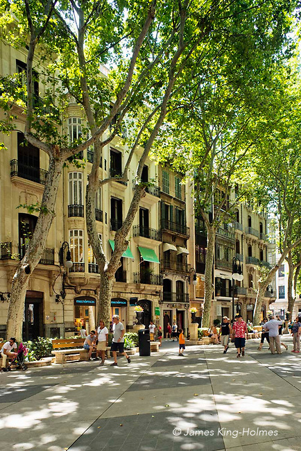 The pedestrianised Passeig des Born, Palma de Mallorca, Spain, one of the island's principal shopping areas. The wide leafy avenue, which is named from the jousting tournaments held there, is Palma's main promenade, thanks to the many cafes and the shade from the many trees lining the central strip.