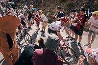 """coming through """"Dutch Corner"""" (#7)<br /> <br /> Stage 12: Bourg-Saint-Maurice / Les Arcs > Alpe d'Huez (175km)<br /> <br /> 105th Tour de France 2018<br /> ©kramon"""