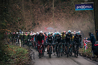 the wet&cold conditions make the peloton create their own mist cloud (damp) above them coming up the Trieu<br /> <br /> 73rd Dwars Door Vlaanderen 2018 (1.UWT)<br /> Roeselare - Waregem (BEL): 180km