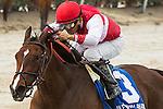 HALLANDALE BEACH, FL- APRIL 02: #3 Go Maggie Go with jockey Nik Juarez up win the Gulfstream Oaks at Gulfstream Park on April 02, 2016 in Hallandale Beach, Florida. (Photo by Arron Haggart/Eclipse Sportswire/Getty Images)