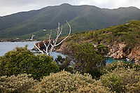 Scenic views and rocky cliffs along the<br /> Tektite trail near Lameshur Bay<br /> St John<br /> U.S. Virgin Islands