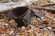 This old stove, a protected artifact, in the Twin Brook drainage of Albany, New Hampshire may be part of the abandoned T. White Camp. This camp was a logging camp associated with the Swift River Railroad (1906-1916). The removal of historical artifacts from federal lands without a permit is a violation of federal law.