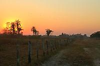 Sunrise in Pantanal Brazil