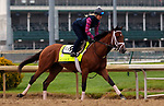 LOUISVILLE, KY -APR 25: Kentucky Derby hopeful Audible working out at Churchill Downs, Louisville, Kentucky. (Photo by Mary M. Meek/Eclipse Sportswire/Getty Images)