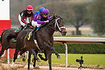 February 17, 2020. Warrior's Charge (6) with jockey Florent Geroux winning the Razorback Handicap at Oaklawn Racing Casino Resort in Hot Springs, Arkansas on Feburary 17, 2020. Ted McClenning/Eclipse Sportswire/CSM